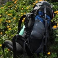 Рюкзаки для отдыха на природе